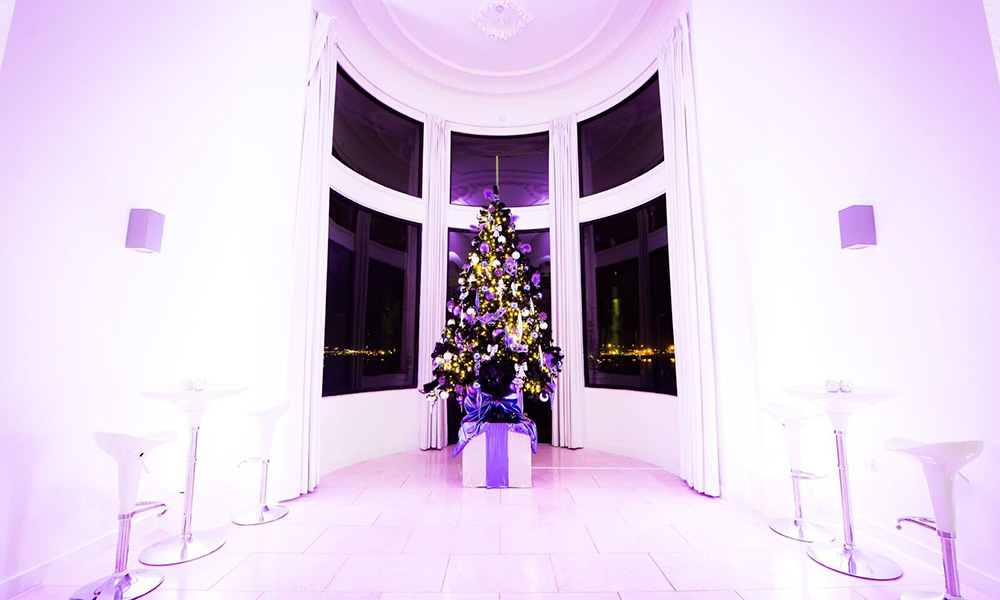 Royal Liver Building Christmas Party