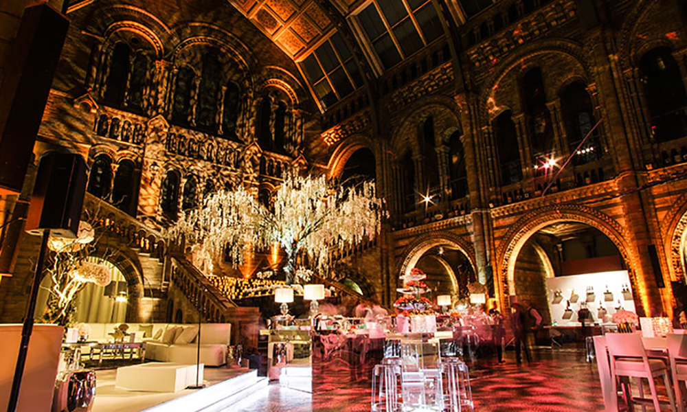 Natural History Museum Christmas Party 3