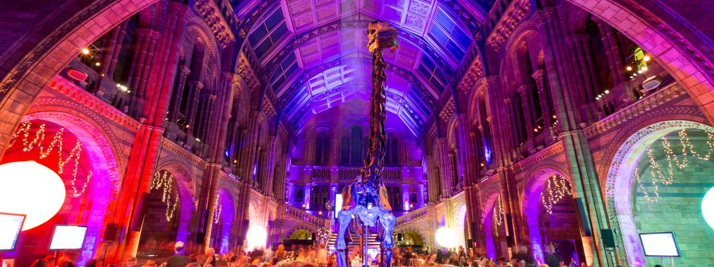 Natural History Museum Christmas Party