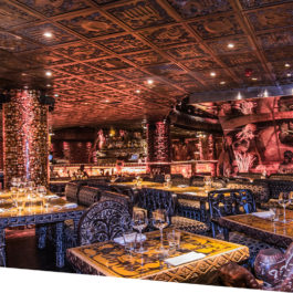 Shaka Zulu Christmas Party